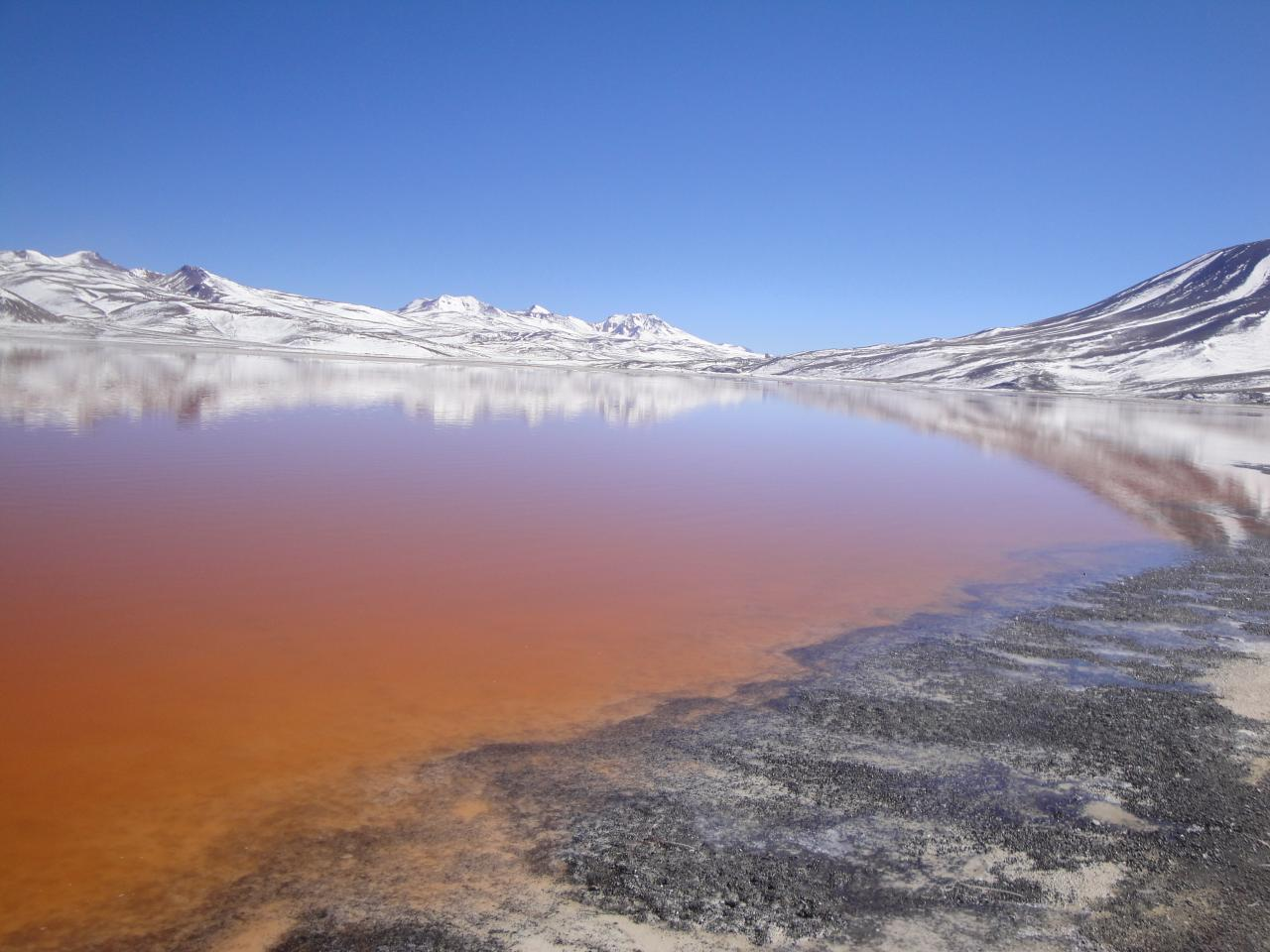 Laguna colorada Salar d'Uyuni Bolivie