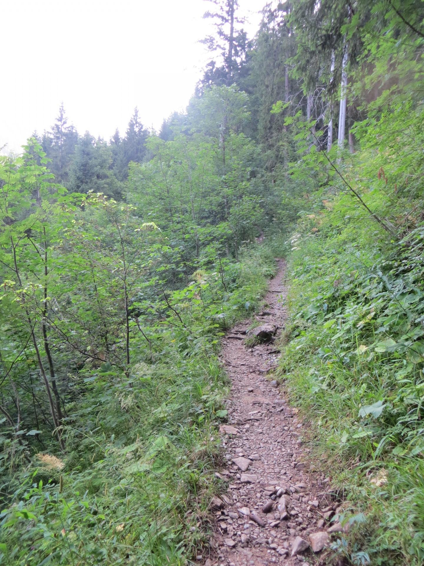 Chemin de randonnée en partance de Kenzehüte